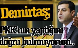 """Selahattin Demirtaş """"PKK'nın yaptıklarını doğru bulmuyoruz"""""""