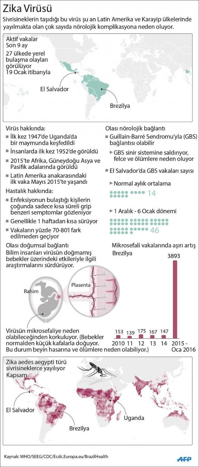 dunyayi-sarsan-zika-virusu-nedir-nasil-bulasir-8106139_2789_m