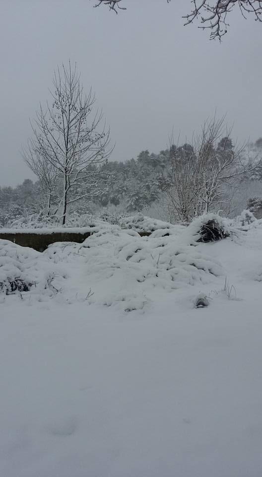 İznik'ten Kar manzaraları